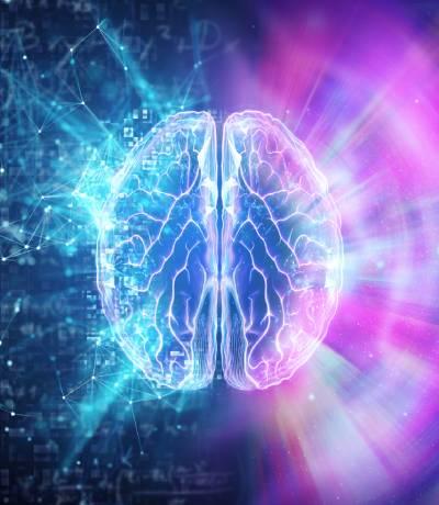 Cerebro en las fases del párkinson